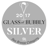 Glass of Bubbly - 2017 - Silver